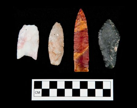 Paleoindian projectile points